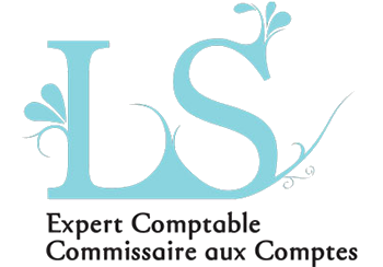 ls ls 2 experts comptables commissaire aux comptes strasbourg. Black Bedroom Furniture Sets. Home Design Ideas